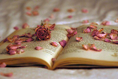 Image result for flowers with books photos
