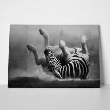 Πίνακας σε καμβά ZEBRA ROLLING DUST ARTISTIC