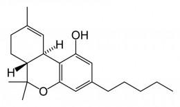 Hemp Oil Cancer Cure (Cannabis Extract Medicine and