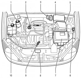 2000 ford focus engine diagram | Amy's blog