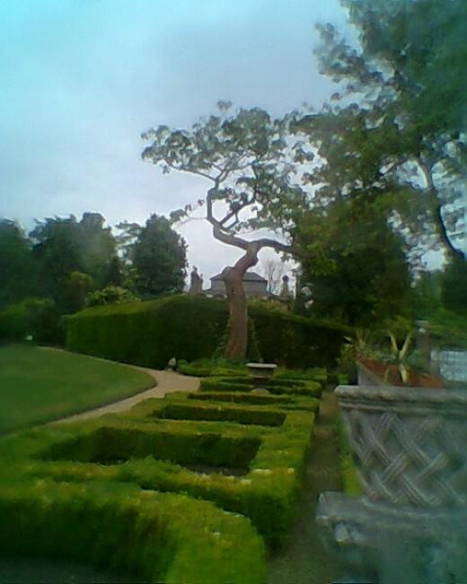enmglish garden