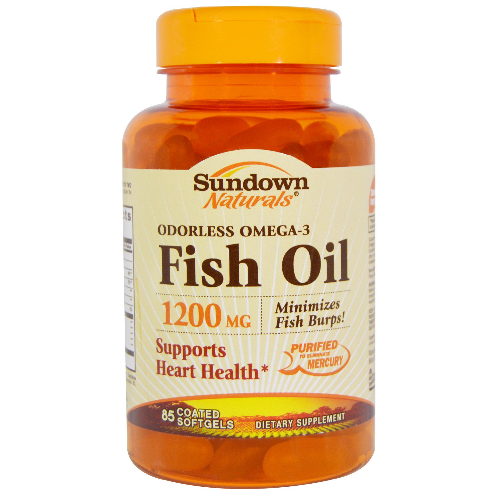 Sundown Naturals, 魚油,無臭Omega-3,1200毫克,85粒糖衣軟膠囊 - iHerb