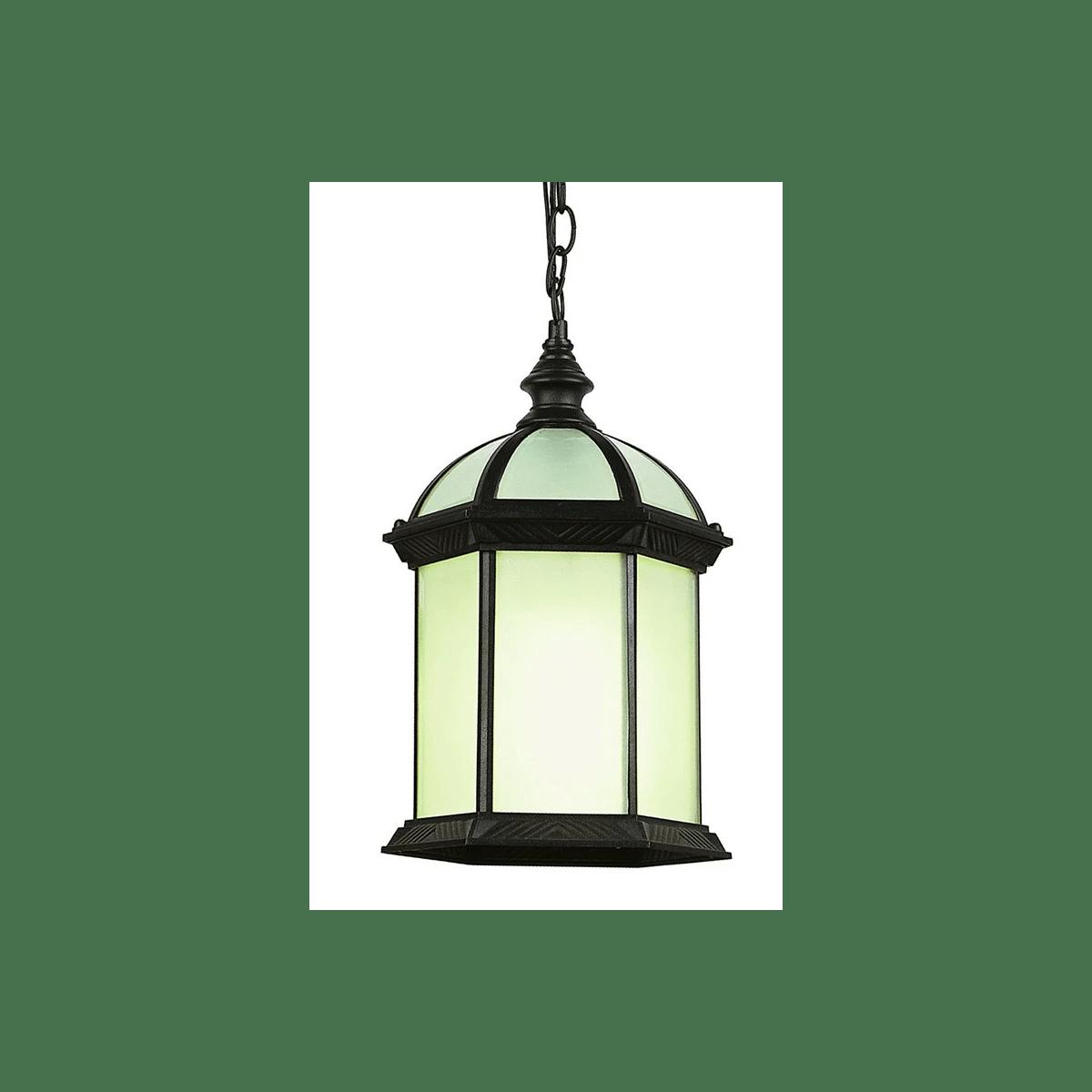 trans globe lighting 4183 bk