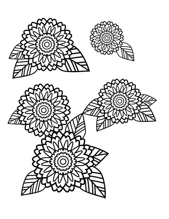 How to Create a Stress Relief Coloring Book Page in Adobe