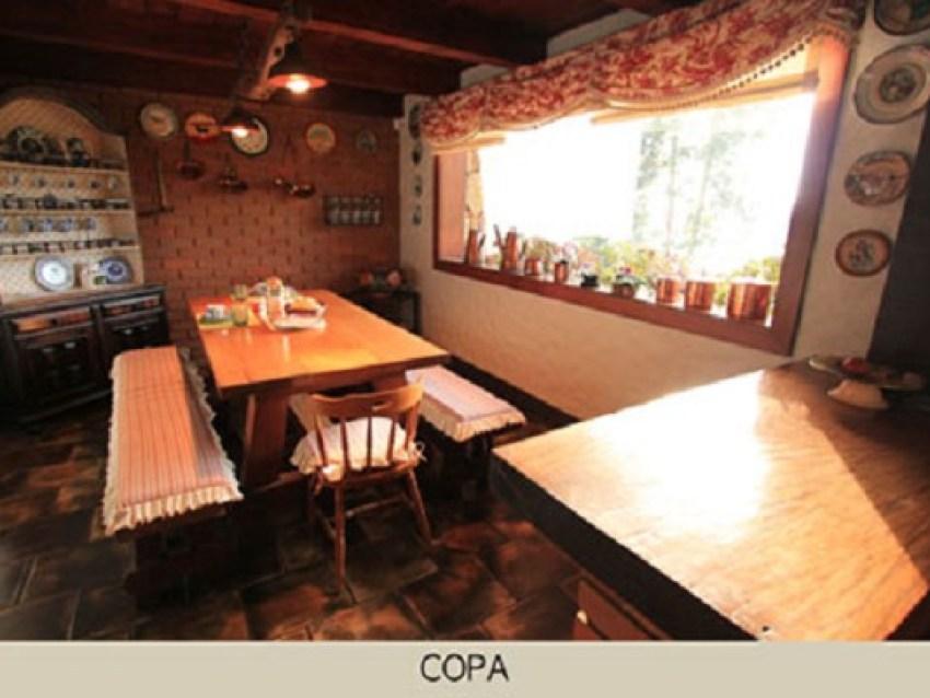 area_social_copa-1.jpg