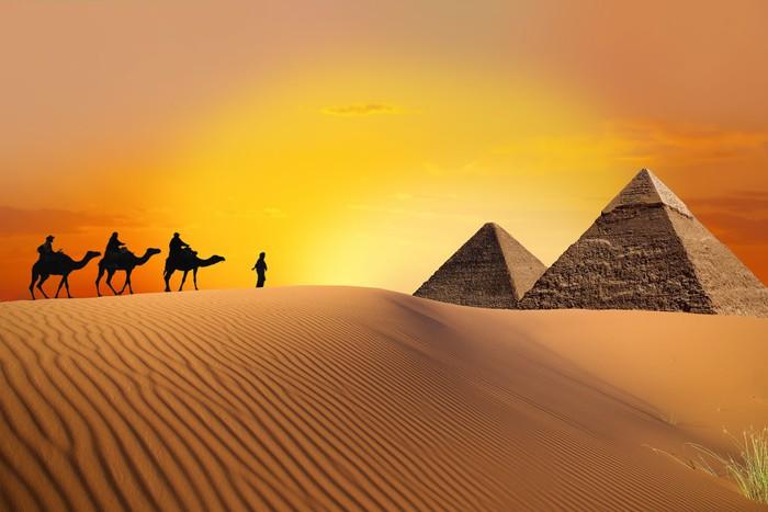 Papier peint Pyramide le chameau et le coucher du soleil  Pixers  Nous vivons pour changer