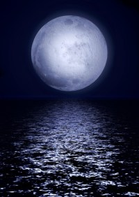 Full moon image with water Wall Mural  Pixers  We live ...