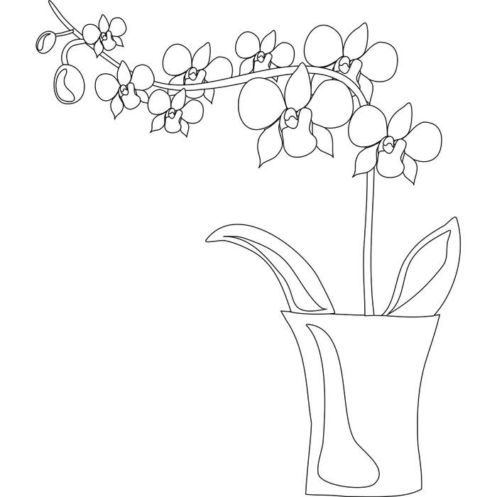 Naklejka Orchidea • Pixers® • Żyjemy by zmieniać