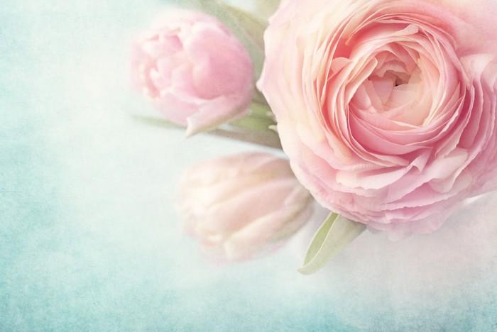 Fotobehang Roze bloemen  Pixers  We leven om te veranderen