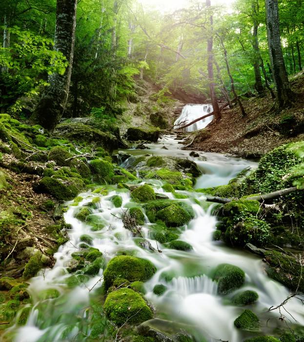 Fototapete Wasserfall im Wald  Pixers  Wir leben um zu verndern