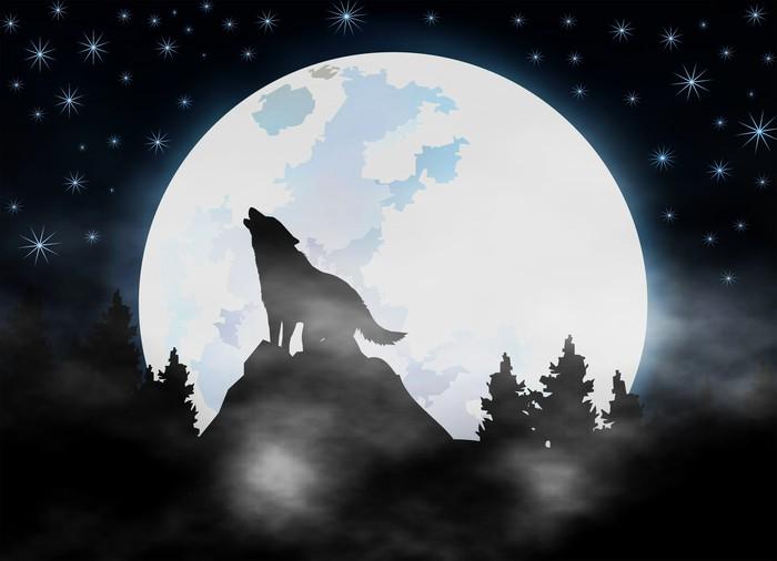 Fototapete Heulender Wolf im Dunkeln Wald  dunklen Nebel  Gothic  Pixers  Wir leben um zu