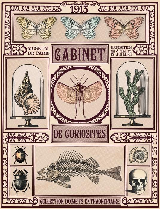 Papier peint Cabinet de Curiosits  Pixers  Nous vivons