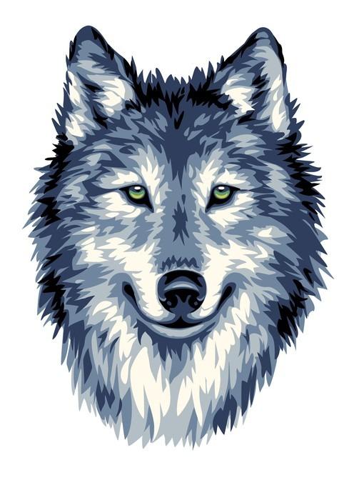 Fototapete Blau wilden Wolf  Pixers  Wir leben um zu