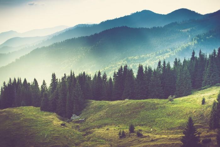 Fototapete Schne Sommer Berglandschaft  Pixers  Wir leben um zu verndern