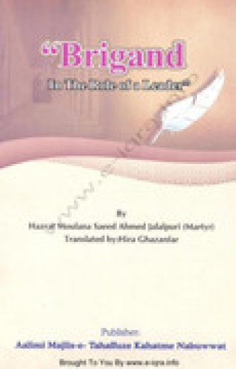 Brigand In The Role Of A Leader By Shaykh Saee