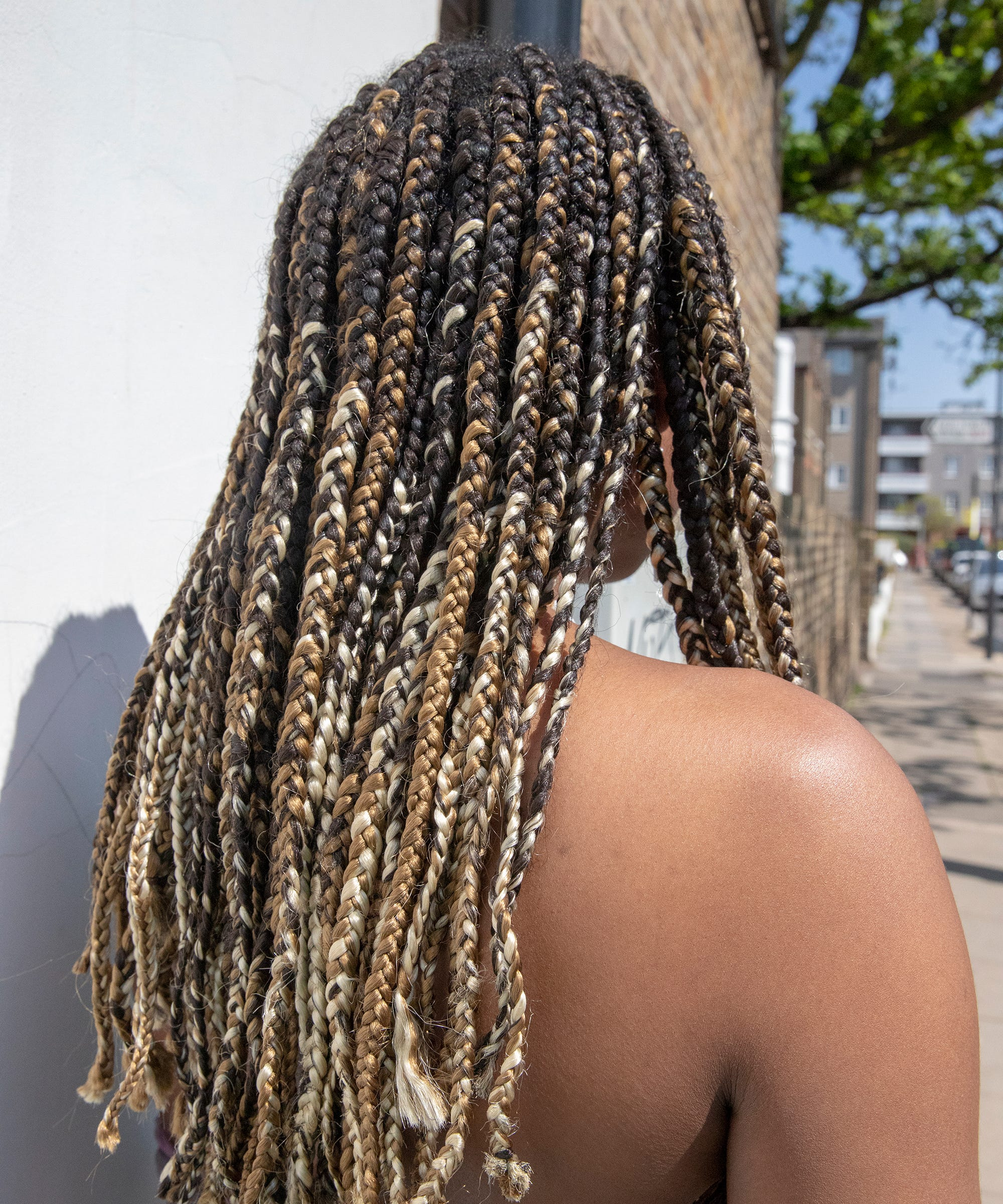 Frizzy Braid Tips How To Keep Braids From Frizzing Up