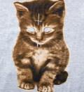 Grey Kitty Zip Up
