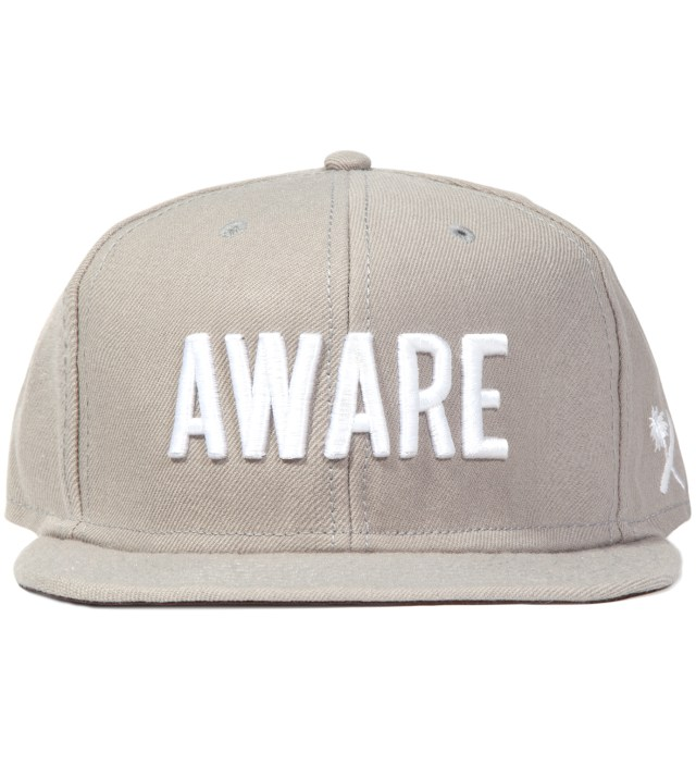 Grey Aware Snapback Ballcap