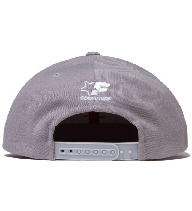 Grey Golf Wang Snapback Cap