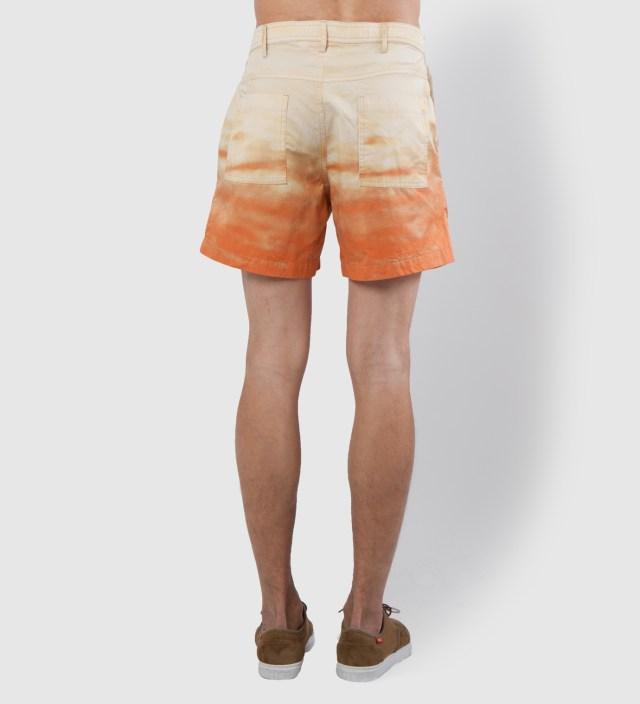 Sunny Hallucinations Shorts