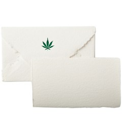 Terrapin Stationers Mary Jane Mini Envelopes With Note Cards (5 Pack) Picutre
