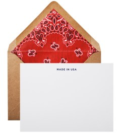 Terrapin Stationers Red Liner Made in USA Note Cards (6 Pack) Picutre