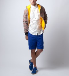 Soulland Blue Craddock Shorts Model Picture