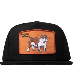 DOG LTD. Black English Bulldog Cap Picture