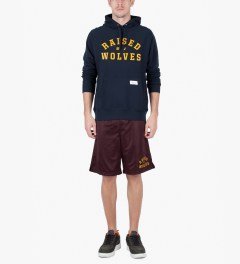 Raised by Wolves Navy College Pullover Hoodie Model Picutre