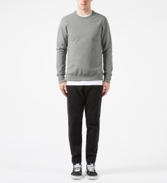Reigning Champ Heather Grey RC-3262-1 Heavyweight Terry L/S Crew Sweatshirt W/ Side Zip Model Picture