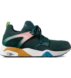 Puma Ponderosa Pine Blaze of Glory Wilderness Shoes Picture