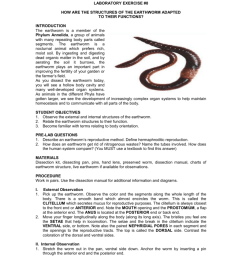 stuyvesant high school department of biology geo science laboratory exercise 8 how are the structures of the earthworm adapted to their functions  [ 791 x 1024 Pixel ]