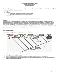 Cladogram Worksheet Answers Photos - Roostanama