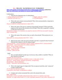 Organic Macromolecules Worksheet. Worksheets. Ratchasima ...