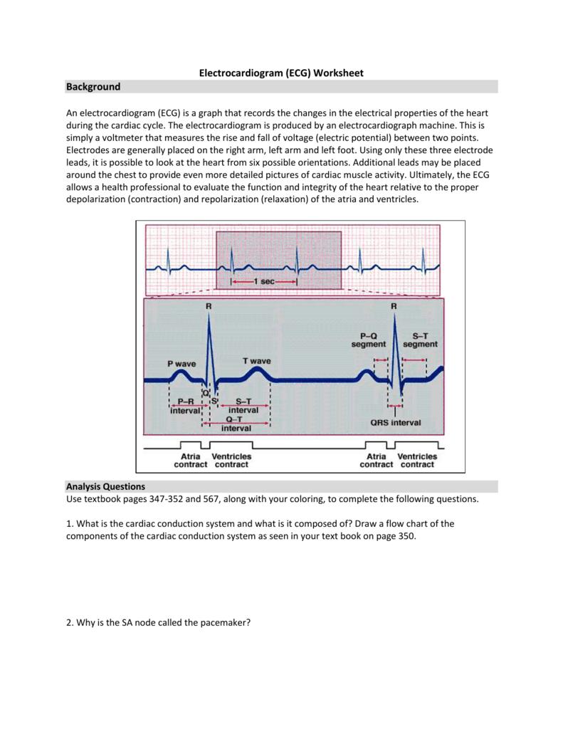 hight resolution of normal ekg diagram