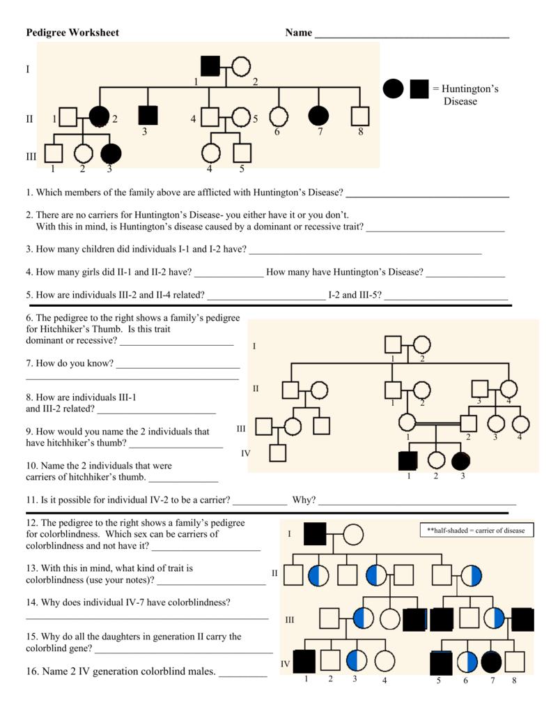 medium resolution of pedigree chart explanation