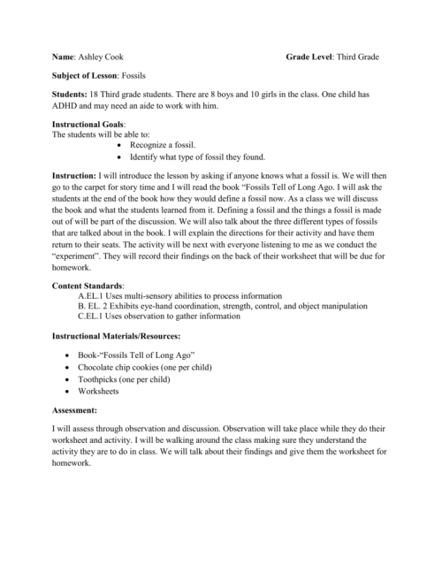 small resolution of Fossil Lesson Plan - Ashley Cook`s Education Portfolio