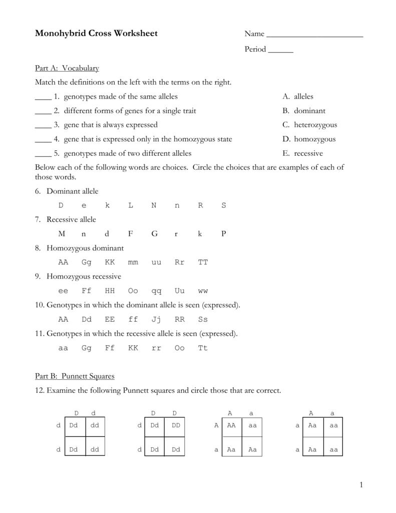 Part C Monohybrid Cross Problems