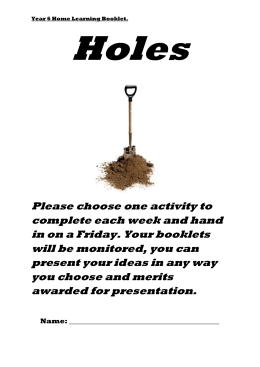 Holes Test