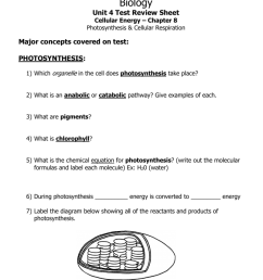 diagram of cell organelle test [ 791 x 1024 Pixel ]