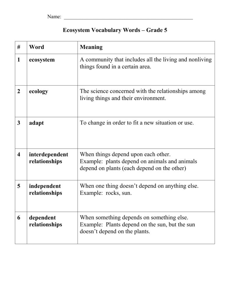 hight resolution of Ecosystem Vocabulary Words