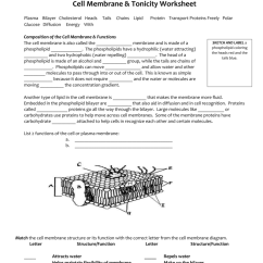 Cell Membrane Diagram Blank How To Draw A Venn Tonicity Worksheet 007064128 1 698e826e584c21a7b6ded6f7c991a752 Png