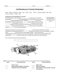 Osmosis And Tonicity Coloring Worksheet Answers