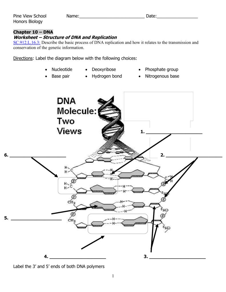 dna diagram worksheet pollak ignition switch wiring