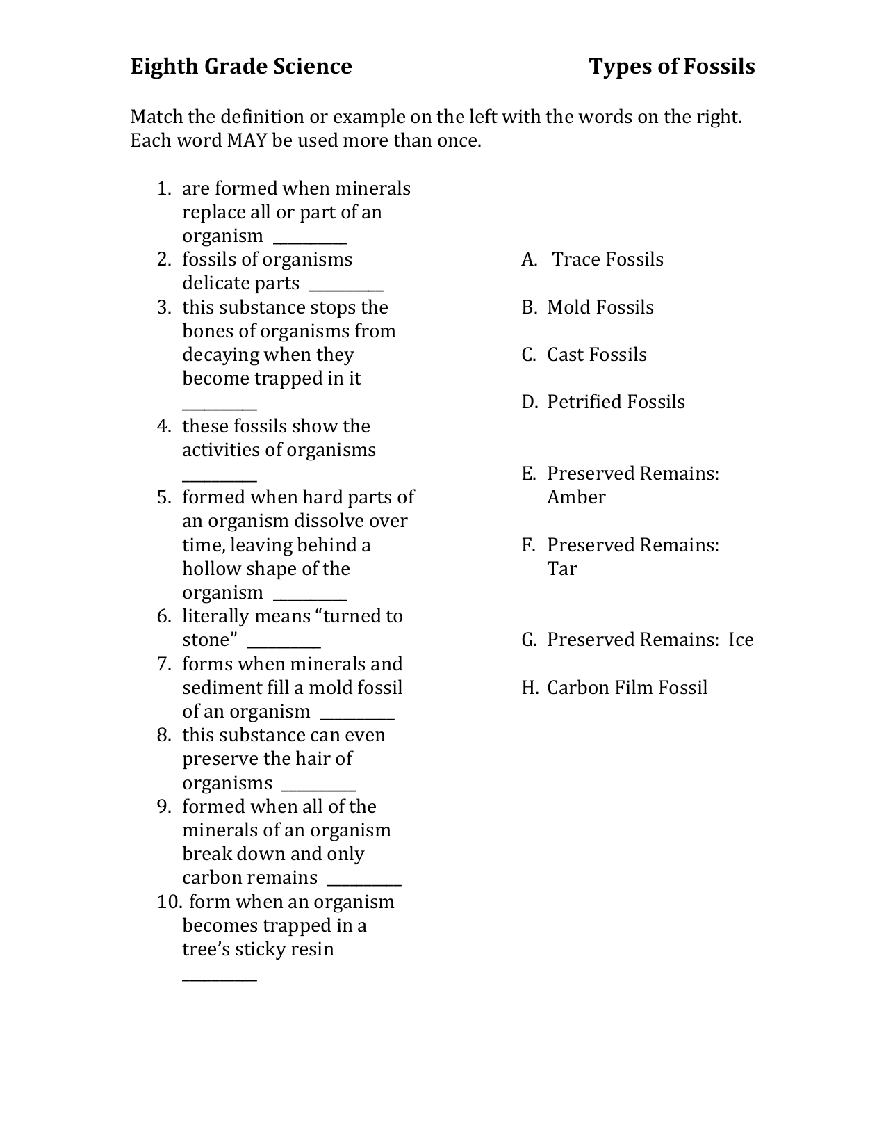 Types Of Fossils Worksheet