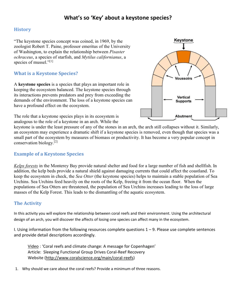 keystone arch diagram wiring for car alternator species 23312 infobit