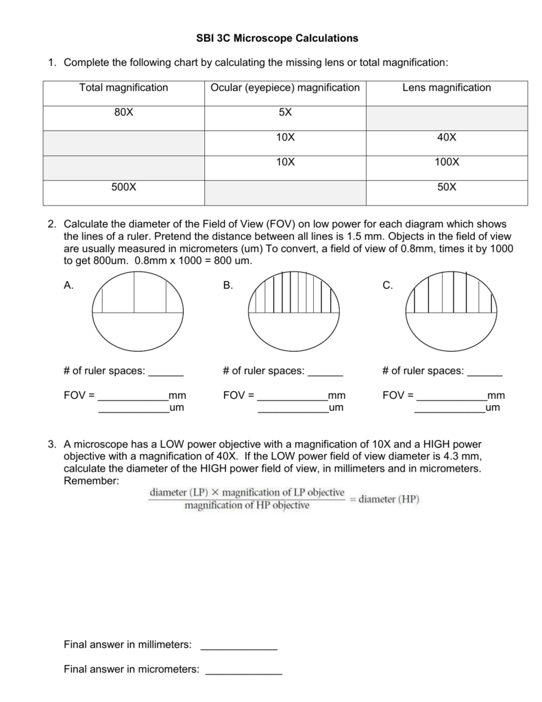Collection of Microscope Magnification Worksheet