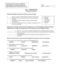 Cell Transport Worksheet Answer Key