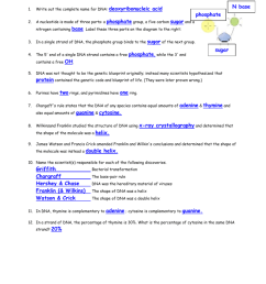 name date period dna replication worksheet 1 write out the complete name for dna 2 a nucleotide is made of three parts a nitrogen containing base  [ 791 x 1024 Pixel ]