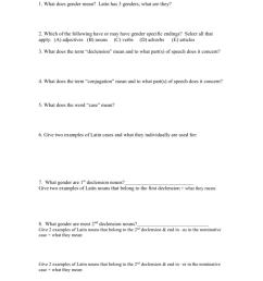 Ch. 3 Grammar Worksheet [ 1024 x 791 Pixel ]